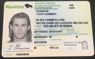 Buy fake Canadian driving license