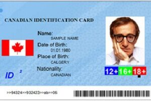 Buy fake Canadian id card online