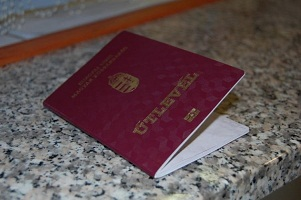 Camouflage passports for sale