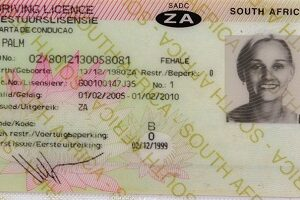 buy Real South African drivers license online