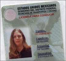 Buy fake Mexico driving license online