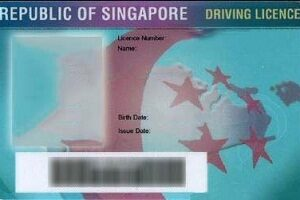 Buy fake Singapore driving license online